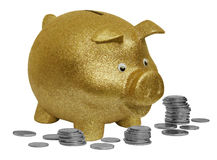 Gold Piggy Bank. Isolated Gold Piggy Bank with coins Royalty Free Stock Photo