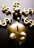Gold piggy bank Stock Images