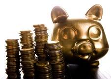 Gold piggy bank Stock Photos