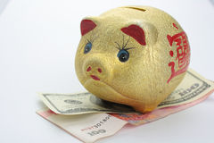 Gold Piggy Bank. Close-up gold piggy bank Royalty Free Stock Photo