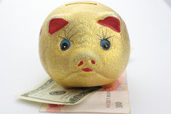 Gold Piggy Bank Royalty Free Stock Image