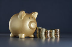 Gold Piggy and Money - Financial Concept Stock Image