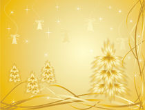 Gold pine Stock Photography