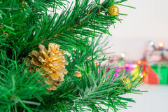 Gold pine ball on christmas tree Stock Images