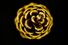 Golden pine cone. A closeup of a gold painted pine cone Royalty Free Stock Photography