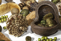 Gold pine cone and Christmas potpourri items Stock Images