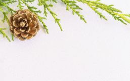 Gold pine cone and fir tree branch on white glitter snow backgro. Und. Simple Christmas background with space for text Royalty Free Stock Photos
