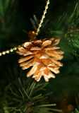 Gold pine cones. On a chain on a fur-tree Stock Photography