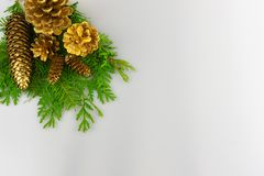 Gold pine cones on greenery in upper left corner royalty free stock image