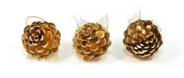 Gold-pinecone Stockbilder