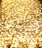 Gold plate Stock Image