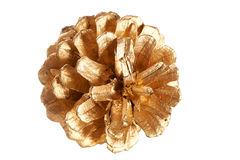 Gold plated pine cone macro isolated Royalty Free Stock Photo