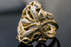 Gold and platinum ring Royalty Free Stock Image