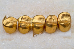 Gold prosthetic teeth on sugar Stock Photos