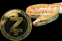 Gold Python and coin cryptocurrency Zcash  ZEC. Concept yellow snake and coin cryptocurrency Zcash stock photo