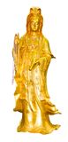 Gold Quan-Yin Royalty Free Stock Photography