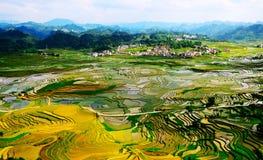 Gold rice terraces of Baping. Guangxi, China Stock Photos