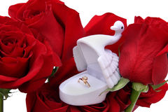 Gold ring in a box of swan on roses Royalty Free Stock Photos