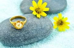 Gold ring and daisy flower Royalty Free Stock Photography