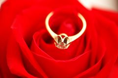Gold ring with diamond on red Royalty Free Stock Image