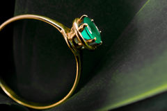 Gold ring with an emerald on leaf Stock Photo