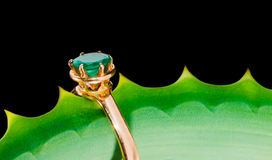 Gold ring with an emerald on leaf Royalty Free Stock Photo