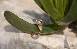 A gold ring is strung on a plant shaped like a finger stock image