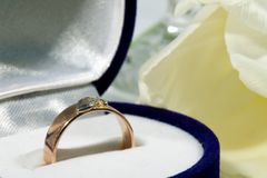 Gold ring with tulip Royalty Free Stock Photography