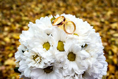 Gold rings on a bouquet of daisies. Royalty Free Stock Photos