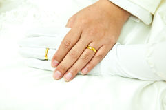 Gold rings on groom and bride's ring fingers Stock Photos