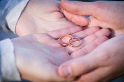 Gold rings in the hands of the bride and groom.  Royalty Free Stock Photography