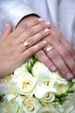 Rings on hands of newlyweds Stock Photos