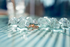 Gold rings in ice Royalty Free Stock Photo