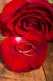 Gold rings on red rose petal Stock Photo