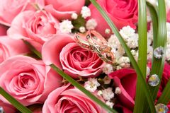 Gold rings and rose bouquet Stock Images