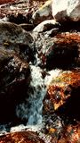 Gold rocks in a waterfall. Gold color rocks in a waterfall . Sweat House Creek- Victor, MT Stock Photo