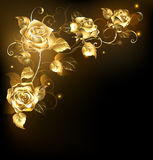 Gold rose on dark background Stock Photo