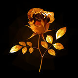 Gold rose with petals and leaves, on a short stalk on a black background. With light and glare Stock Photos