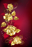 Gold rose on red background Stock Photo