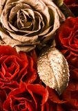 Gold rose & Red roses Royalty Free Stock Photography