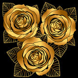 Gold roses Stock Photo
