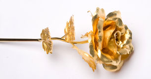 Gold roses Royalty Free Stock Image