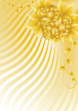 Gold roses. On a wavy abstraction background Stock Image
