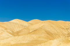 Gold sand dunes in desert with blue sky Stock Image