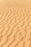 Gold dunes in great indian desert Royalty Free Stock Image