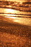 Gold sand. Sunset. Beach sunlit. Shallow deep of field Stock Image