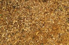 Gold sawdust horizontal Stock Image