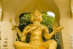 Gold scapture brahma Stock Image