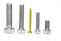 Gold screw between bolts. Royalty Free Stock Image
