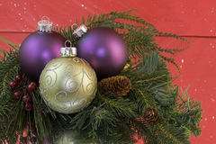 Gold scroll ornament on fir branch Stock Images